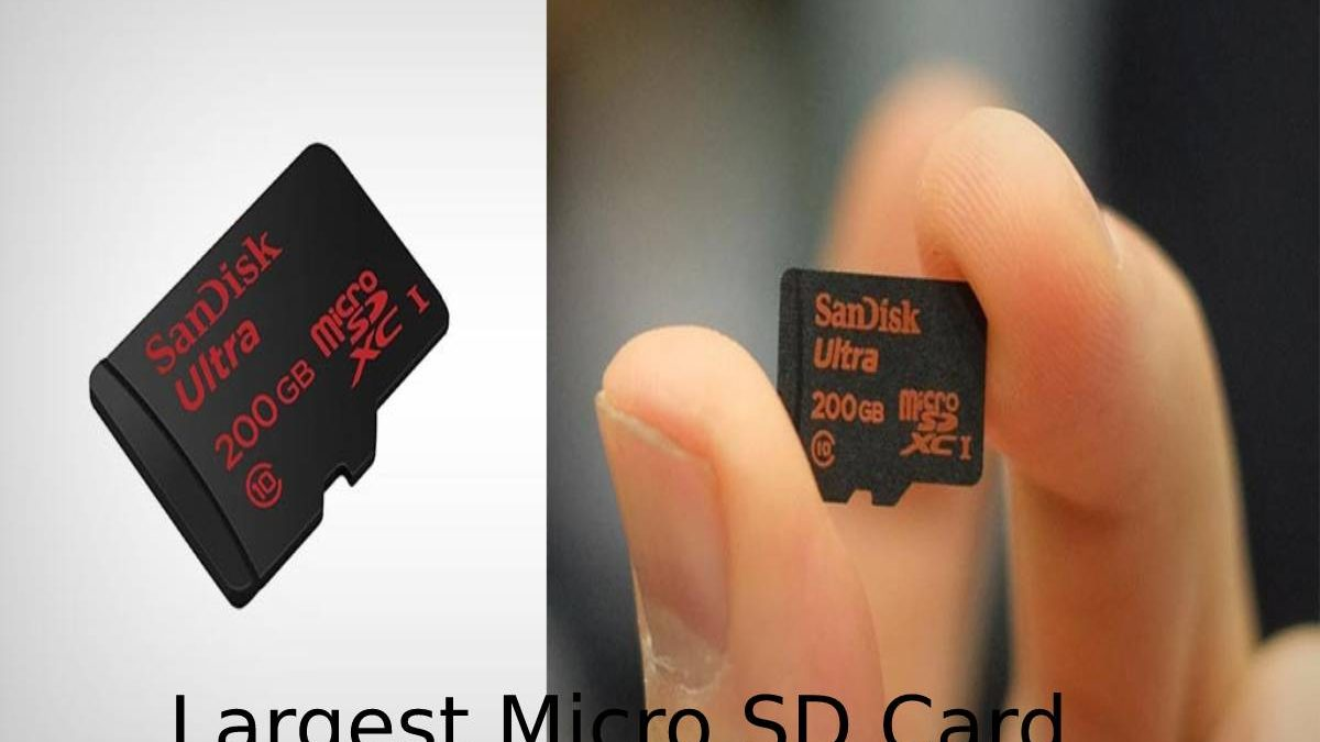 Largest Micro SD Card – Advantages, Disadvantages, and More