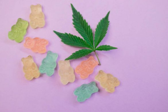 all the benefits of cbd flower wholesale